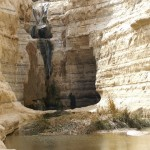 Pools in Negev10
