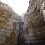 Pools in Negev3