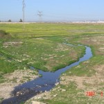 Wadi Hebron in Confluence with Wadi Beer Sheva
