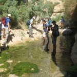 Traversing the Water Trail - Wadi Arugot - 27July13