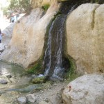 Water from the rock - Wadi Arugot - 27July13