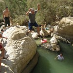 Taking the plunge - Ein Gedi- 27July13